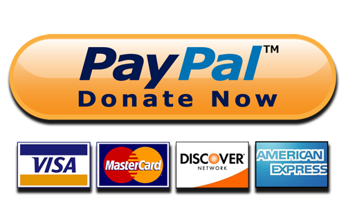 paypal donate button high quality png 1