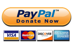 paypal donate button high quality png